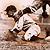 1907 Baseball History