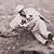 1931 Baseball History