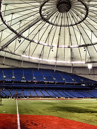 Ceiling rings at Tropicana Field